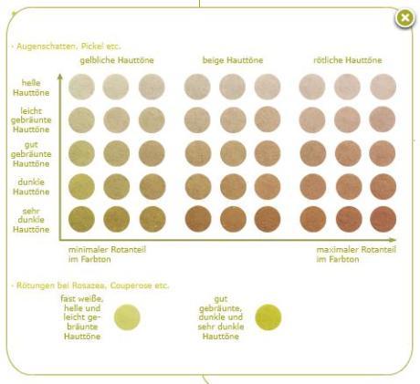 Screenshot Concealer Farbtafel von Andrea Biedermann