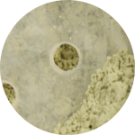 ChriMaLuxe Minerals Corrector Grün